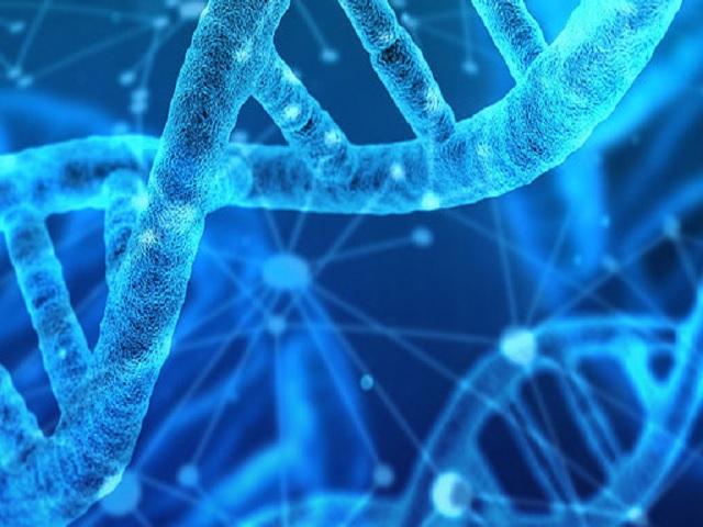 CBSE Class 11 Biology Syllabus 2021-22: Term 1 (PDF)