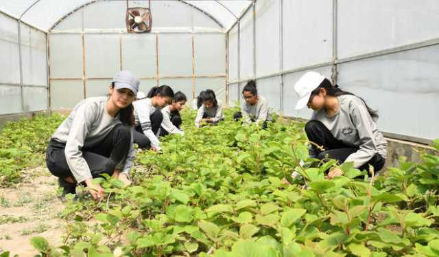 Various Careers in Indian Agriculture