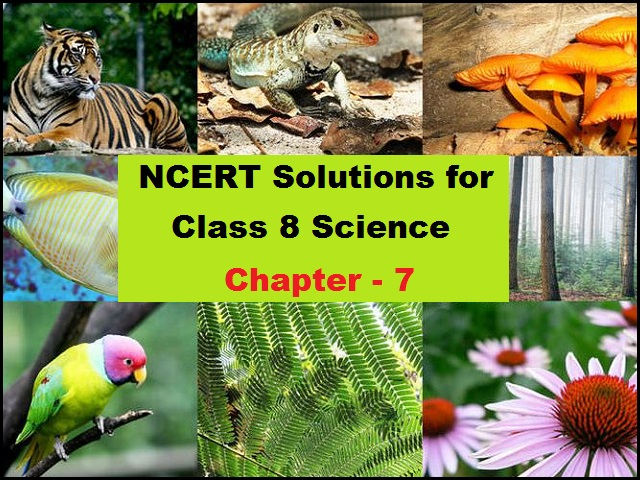 NCERT Solutions for Class 8 Science Chapter 7 Conservation of Plants and Animals
