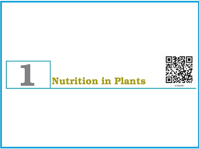 Nutrition in Plants - Chapter 1: Class 7 Science NCERT Book (PDF)