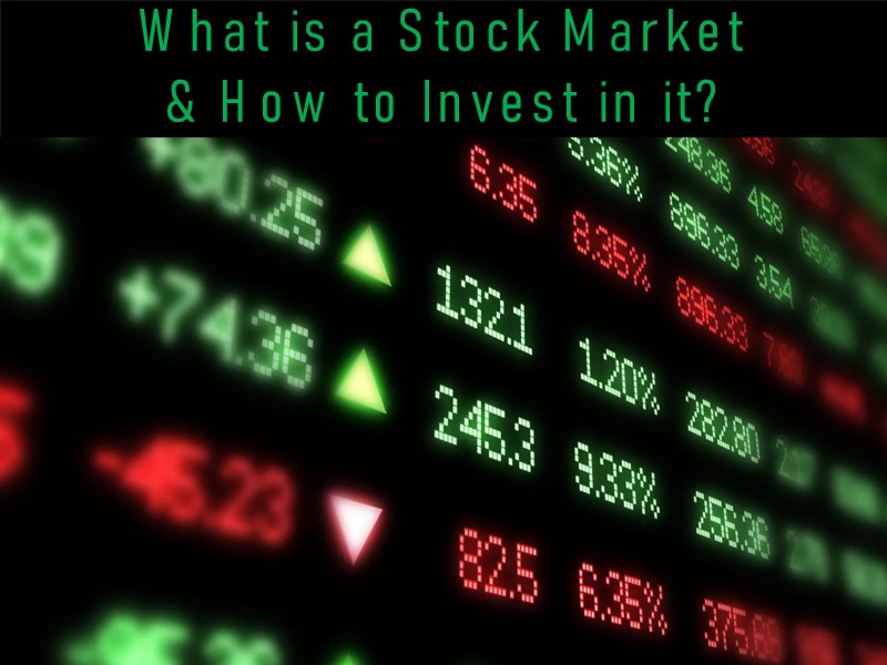 Stock Market Investment Tips