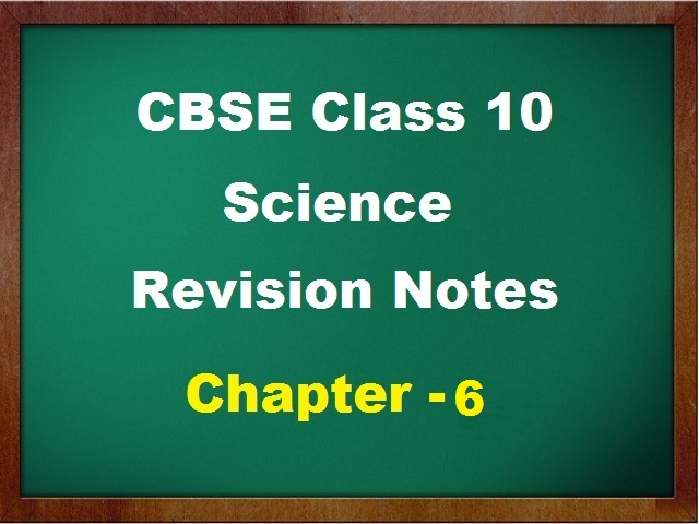 CBSE Class 10 Science Revision Notes for Chapter 6 Life Processes