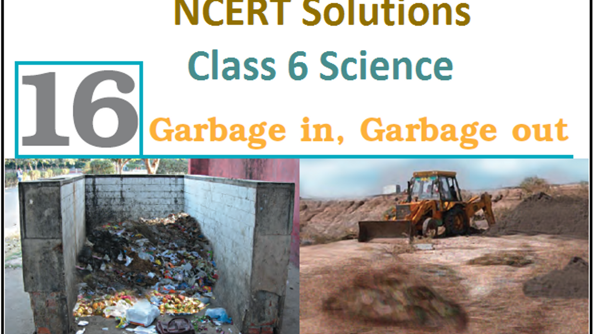 NCERT Solutions for Class 6 Science Chapter 16: Garbage In, Garbage Out