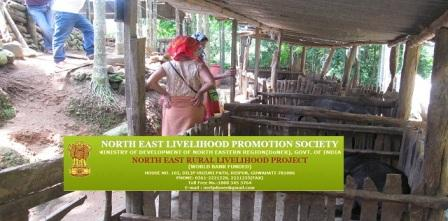 North East Livelihood promotion Society