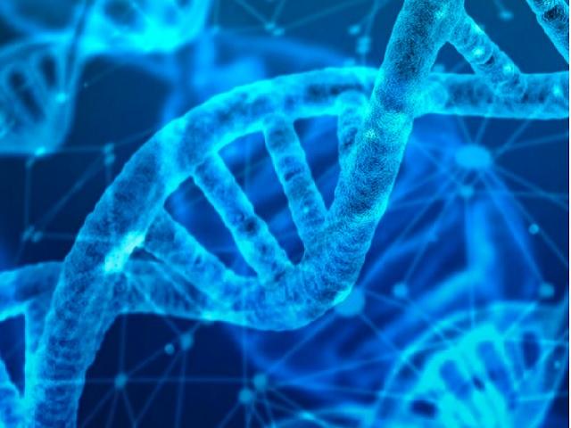 CBSE Class 12 Biology Marking Scheme 2021