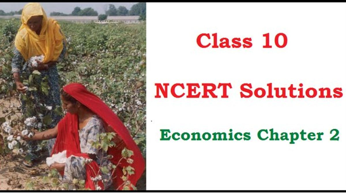 NCERT Solutions for Class 10 Social Science Economics Chapter 2