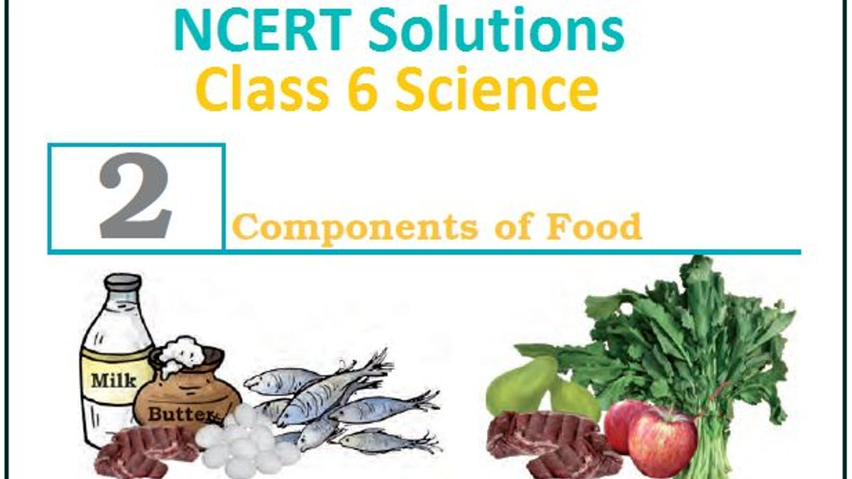 NCERT Solution for Class 6 Science Chapter 2