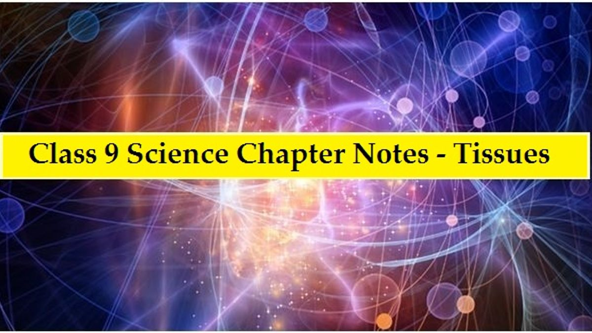CBSE Class 9 Science Chapter Notes on Tissues