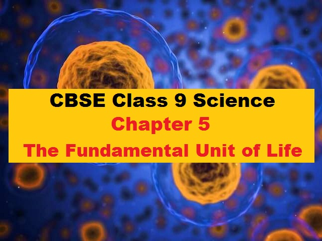 CBSE Class 9 Science Extra Questions Answers Chapter 5