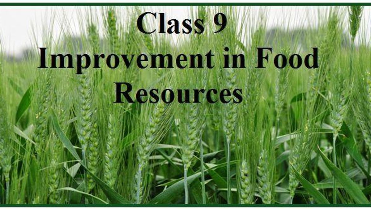 CBSE Class 9, Improvement in Food Resources: Notes
