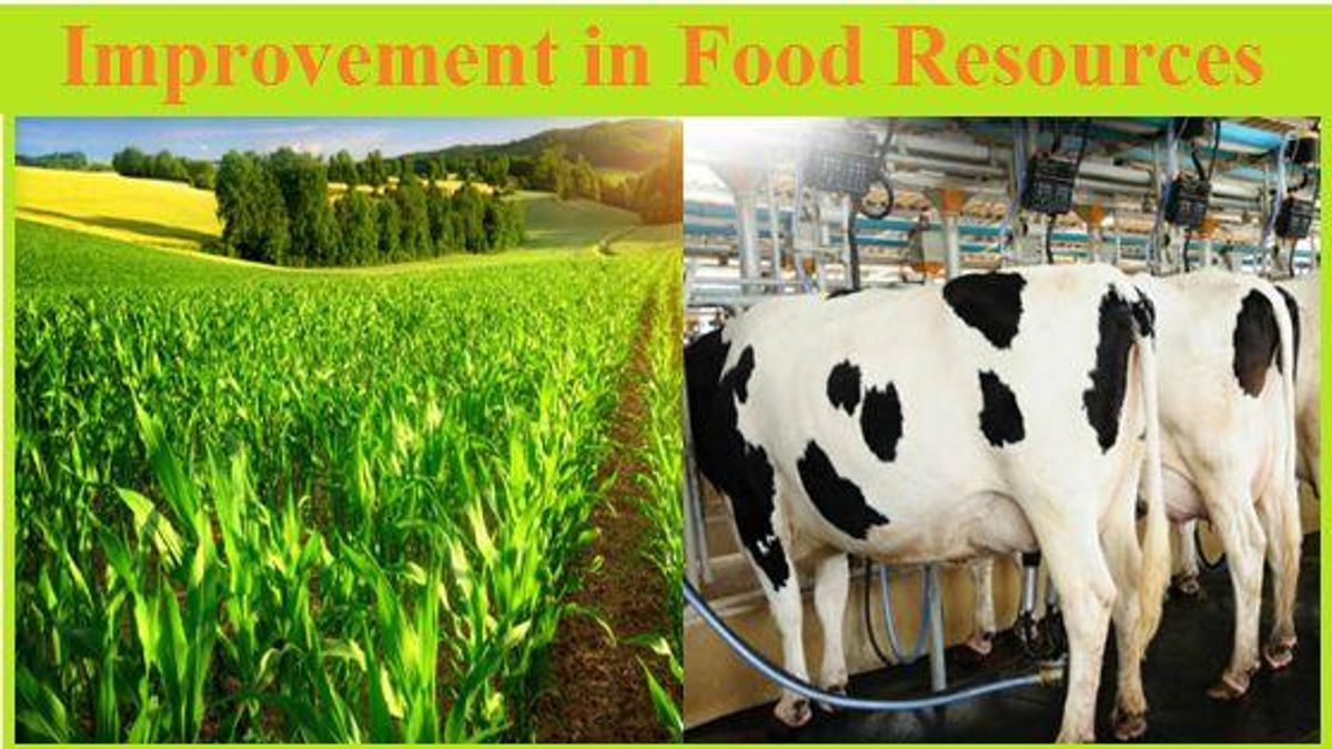 CBSE Class 9 Science, Improvement in Food Resources- Notes