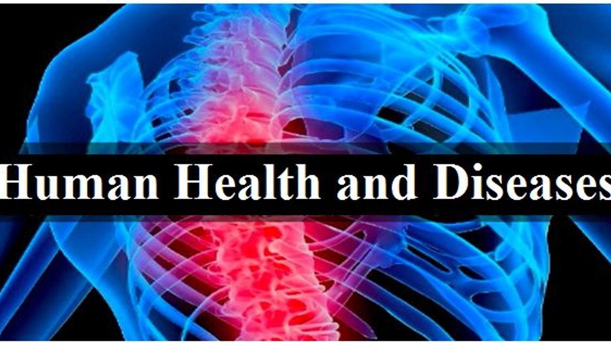 Human Health and Diseases: NCERT Exemplar Solutions