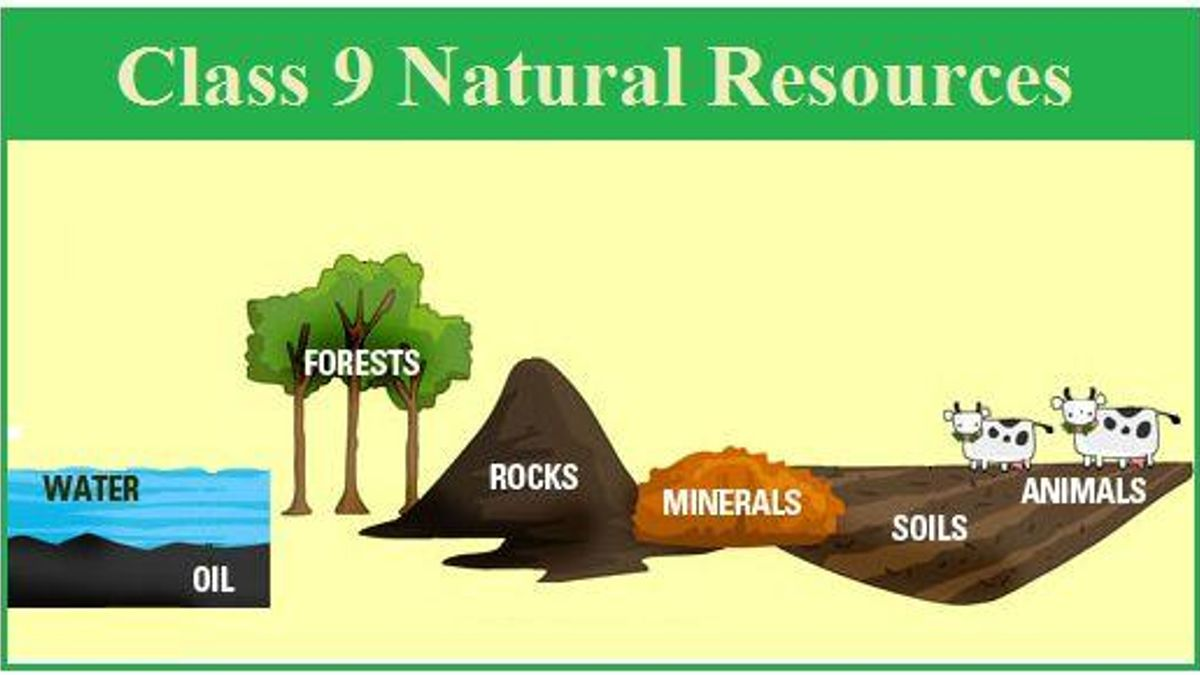 Class 9 Natural Resources: Chapter Notes