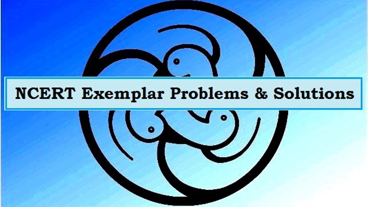 Class 10 NCERT Exemplar Solutions