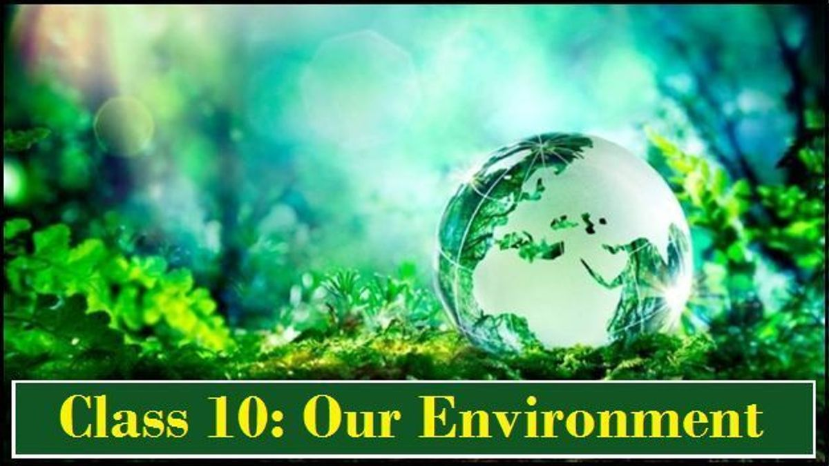 Our Environment: NCERT Solutions
