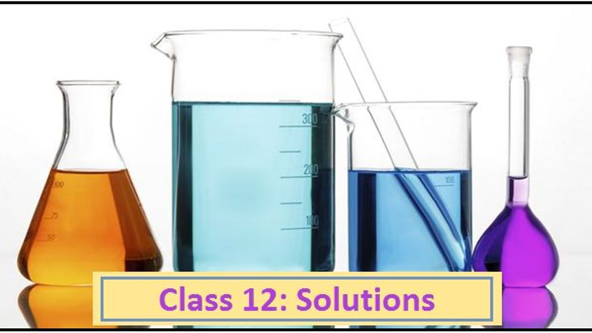 NCERT Exemplar Solutions: Solutions