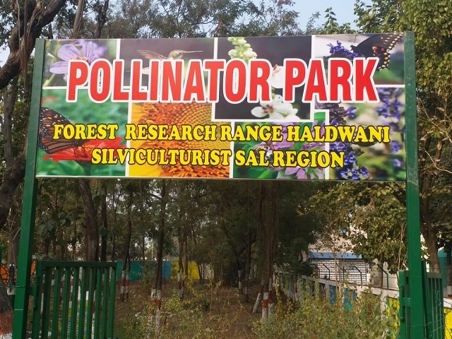 India's first Pollinator Park in Haldwani, Uttarakhand