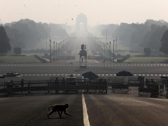 Color-coded action plan in Delhi