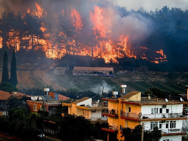 Forest Fire in Turkey