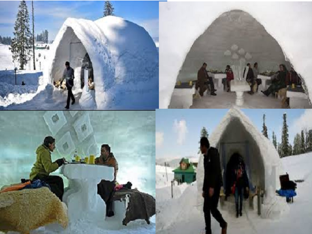 India's first Igloo Cafe