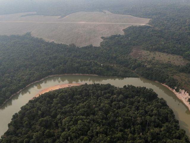 Amazon Rainforest, Source: Reuters