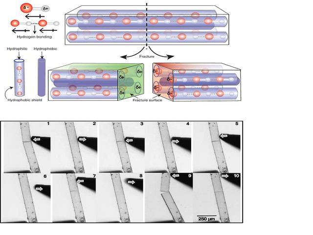 Piezoelectric Molecular Crystals, Source: DST India