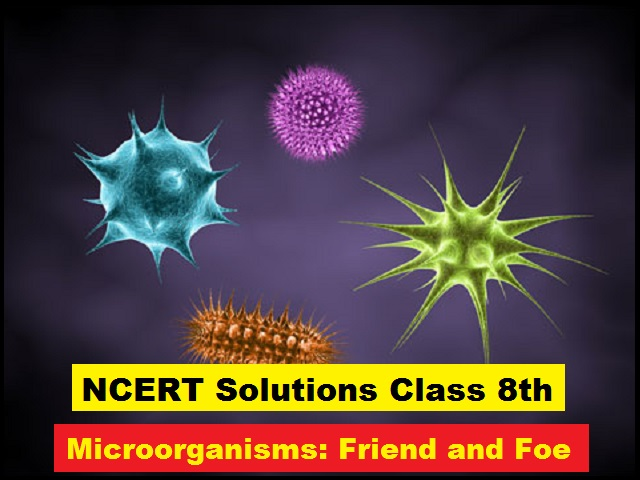 NCERT Solutions for Class 8 Science Chapter 2 Microorganisms Friend and Foe PDF