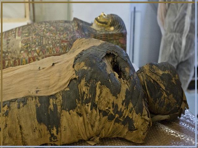 Pregnant Egyptian Mummy