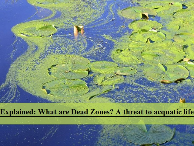 Explained: What are dead zones and how are they created?