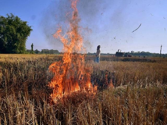 Problem of Stubble Burning