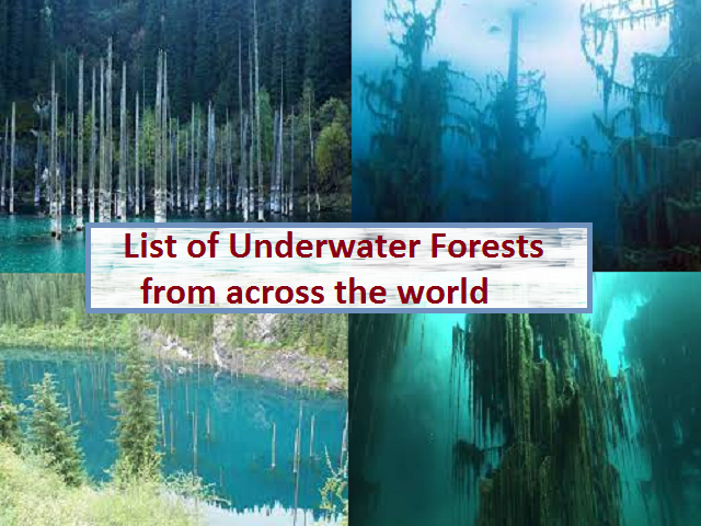 List of Underwater Forests from across the World