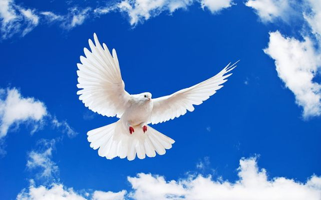 International Day of Peace 2021: History and Significance