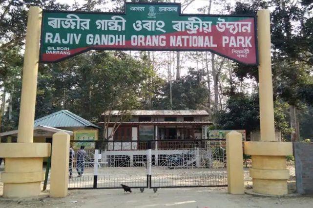 Assam Cabinet decides to rename Rajiv Gandhi National Park as Orang National Park