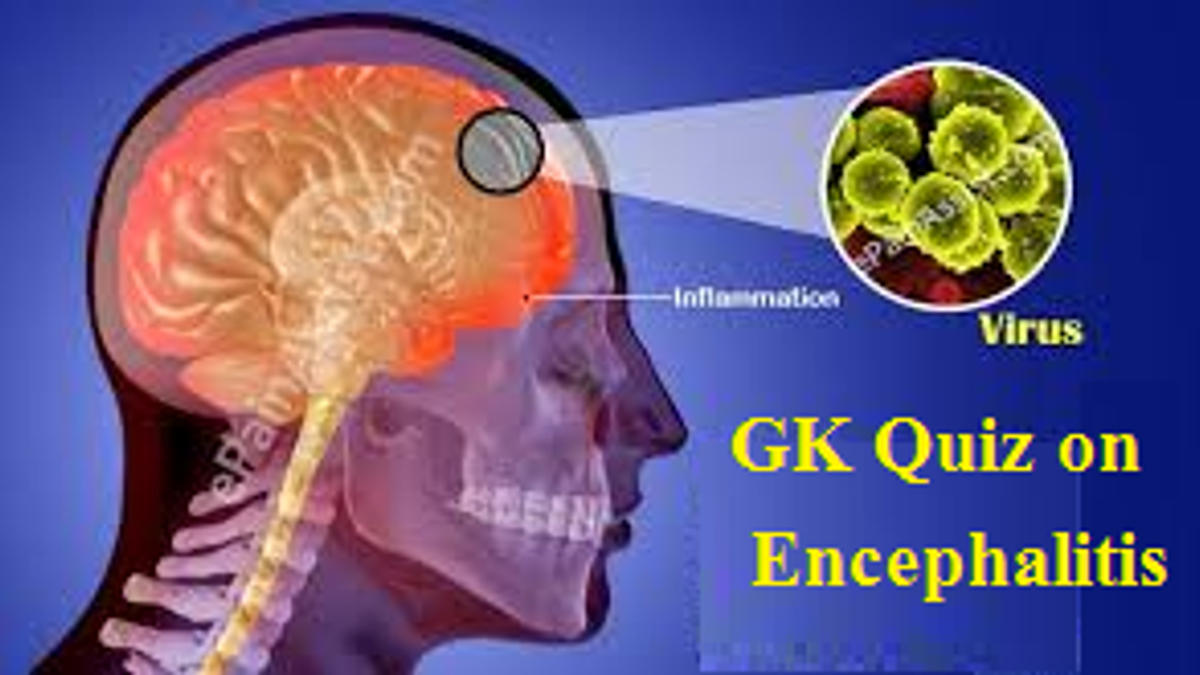 10 GK Questions and Answers on Encephalitis or Chamki Fever