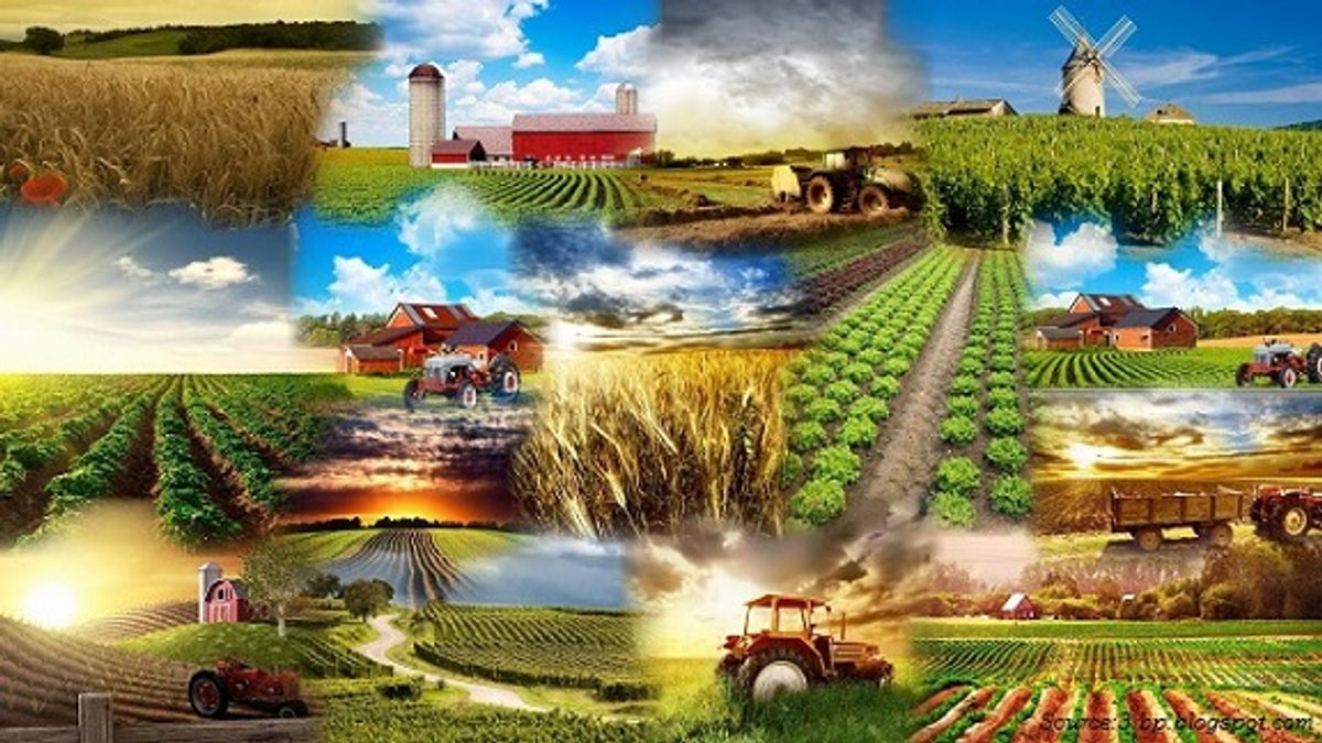 Modern Agriculture and its impact on the environment in Hindi