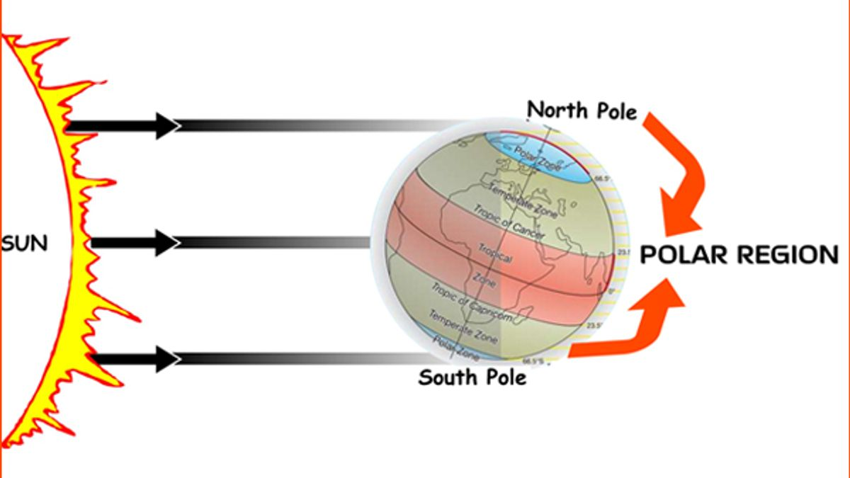 Interesting facts about Polar Regions