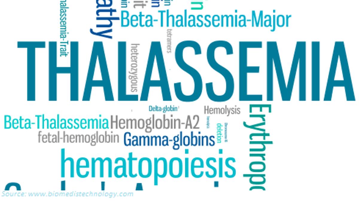 What is Thalassemia Disease?