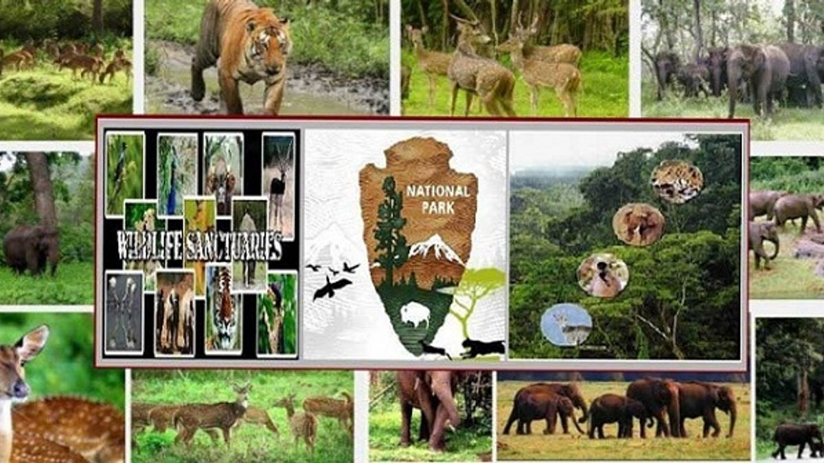 Difference between Wildlife Sanctuary, Biosphere Reserves and National Park