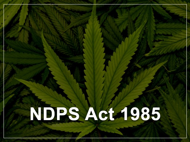What is the Narcotic Drugs and Psychotropic Substances Act (NDPS) Act of 1985?