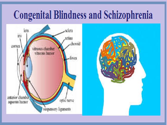 Congenital blindness and schizophrenia