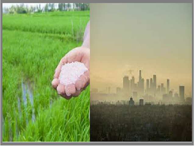 What are the impacts of Nitrogen Pollution?