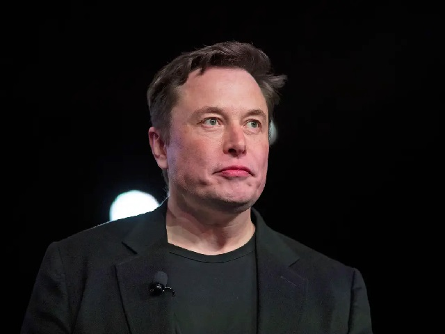 Elon Reeve Musk Biography