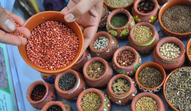 FAO Council approves India's proposal to observe 2023 as International Year of Millets